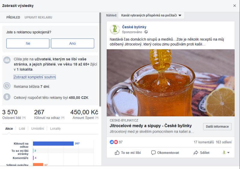 Výsledky reklamní kampaně na Facebooku